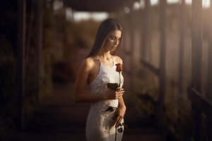 Girl With Rose In Hand Wallpaper