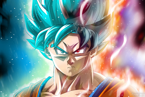 Goku Anime Dragon Ball Super 4k 5k Wallpaper