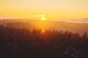 Golden Hour Foggy Landscape 4k Wallpaper