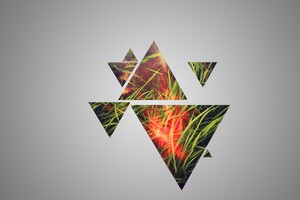 Grass Triangle