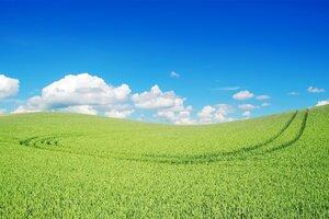 Green Landscape Beautiful Wallpaper