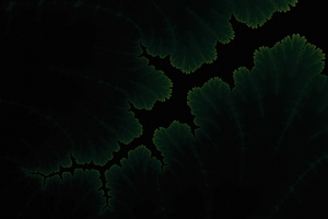 Green Plants Dark Amoled Wallpaper