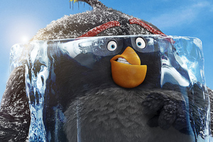 Grey The Angry Birds Movie 2 2019