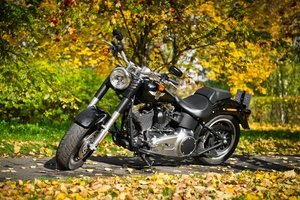 Harley Davidson Motorcycle 2 Wallpaper