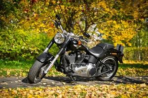 Harley Davidson Motorcycle 2