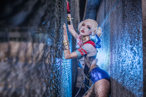 Harley Quinn Cosplay 5k Wallpaper