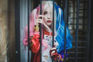 Harley Quinn Cosplay 5k New