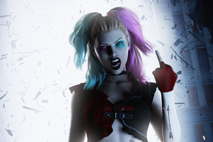Harley Quinn Crazy Girl