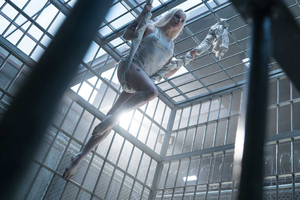 Harley Quinn Suicide Squad Movie