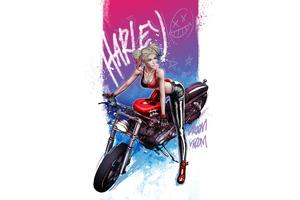 Harley Quinn Vroom Vroom