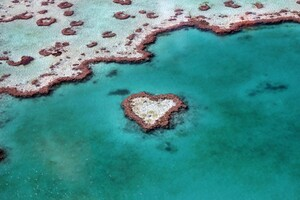 Heart Reef Australia Wallpaper