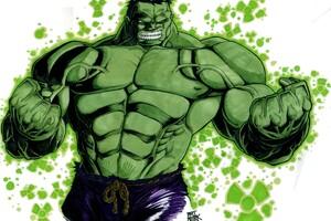 Hero 2 The Hulk Colored