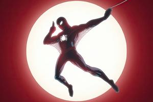 Hey Spider Man