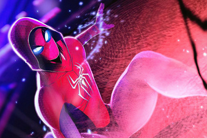 Hooded Weaver Spiderman 4k Wallpaper