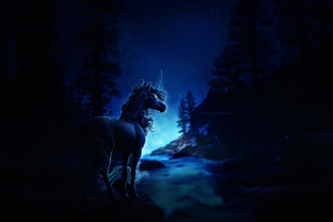 Horse Blue Night Wallpaper
