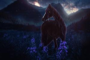 Horse Meadow Night Flowers 4k Wallpaper
