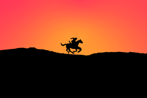 Horse Minimal Sunset 4k Wallpaper