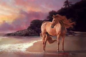 Horse On Beach Artwork