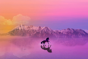 Horse Photo Manipulation Wallpaper