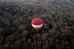 Hot Air Balloons Aerial View Forest