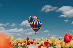 Hot Air Balloons White Red Yellow Tulip Flowers Wallpaper