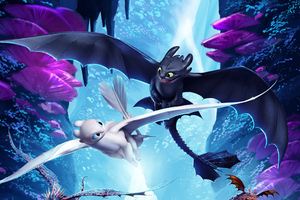 How To Train Your Dragon The Hidden World Night Fury And Light Fury