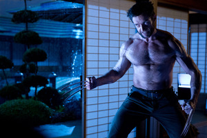 Hugh Jackman Wolverine Wallpaper