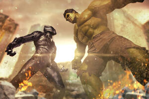 Hulk Vs Black Panther