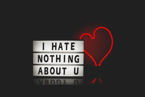 I Hate Nothing About You Wallpaper