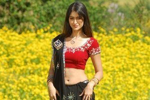 Ileana Dcruz Indian Celebrity Wallpaper