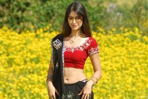 Ileana Dcruz Indian Celebrity