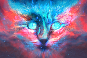 Into Dreams Cat Wallpaper