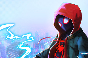 Into The Spider Verse