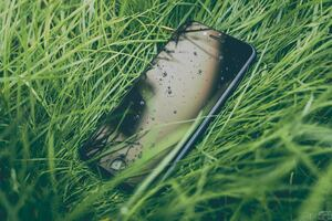 Iphone Water Drops Grass 5k