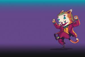 Joker Cat Minimal 4k Wallpaper