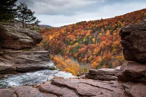 Kaaterskill Falls 5k Wallpaper