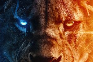 King Of The Jungle 4k