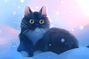Kitten Snow Wallpaper