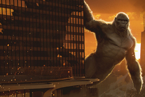Kong V Godzilla 5k
