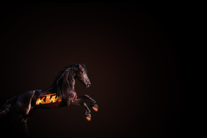 Ktm Horse Wallpaper