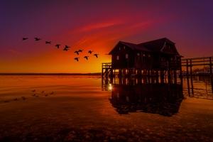 Lake House On Pier Birds Flying Sunset Scenery Wallpaper