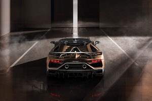 Lamborghini Aventador SVJ Roadster 2019 Rear Wallpaper