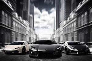 Lamborghinis Black And White 4k