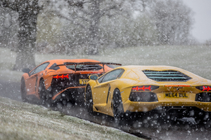 Lambos In The Snow