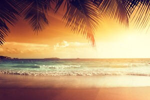 Landscape Beach Tropical Sun