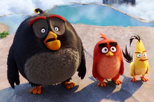 Latest Angry Birds 2016 Movie Wallpaper