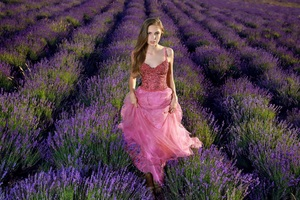Lavender Field Girl Dress Cute 4k Wallpaper