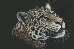 Leopard Painting 4k Wallpaper