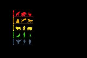 Life Evolution Minimalism