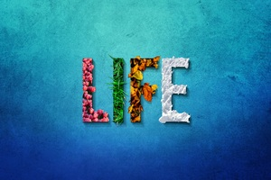 Life Typography 8k Wallpaper